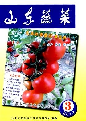 《山东蔬菜》