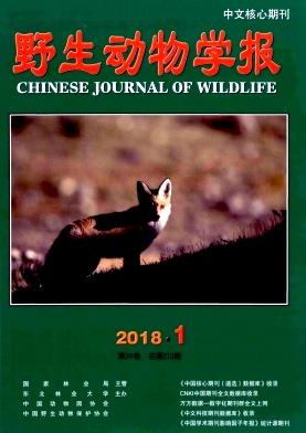 《野生动物学报》