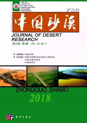 《中国沙漠》